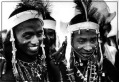The Niger - Young Republic