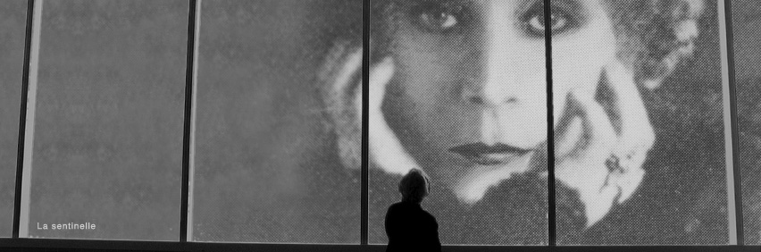 Photo taken from The Sentry, a 2010 documentary short directed by Claude Guilmain. A person looking at a large black and white photo of a woman's face.